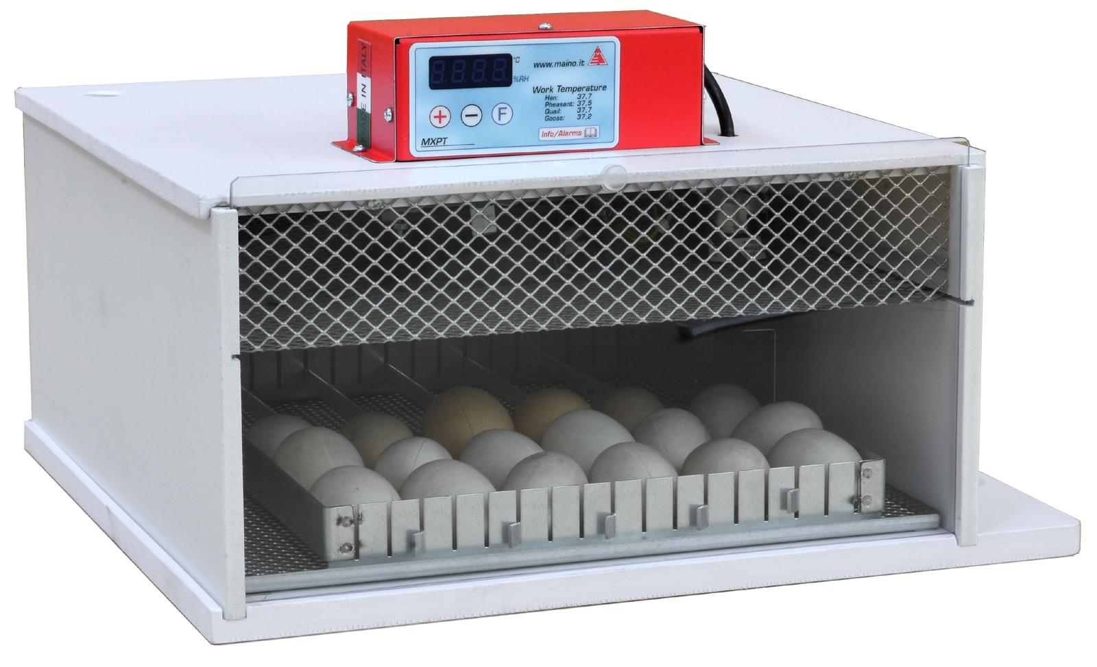 Broedmachine PIOPIO 36 W-DU